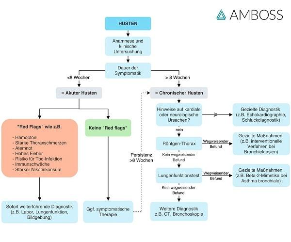 amboss-flowchart-praktisches-vorgehen-bei-patienten-mit-husten